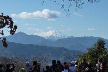 高尾山頂から見た富士山